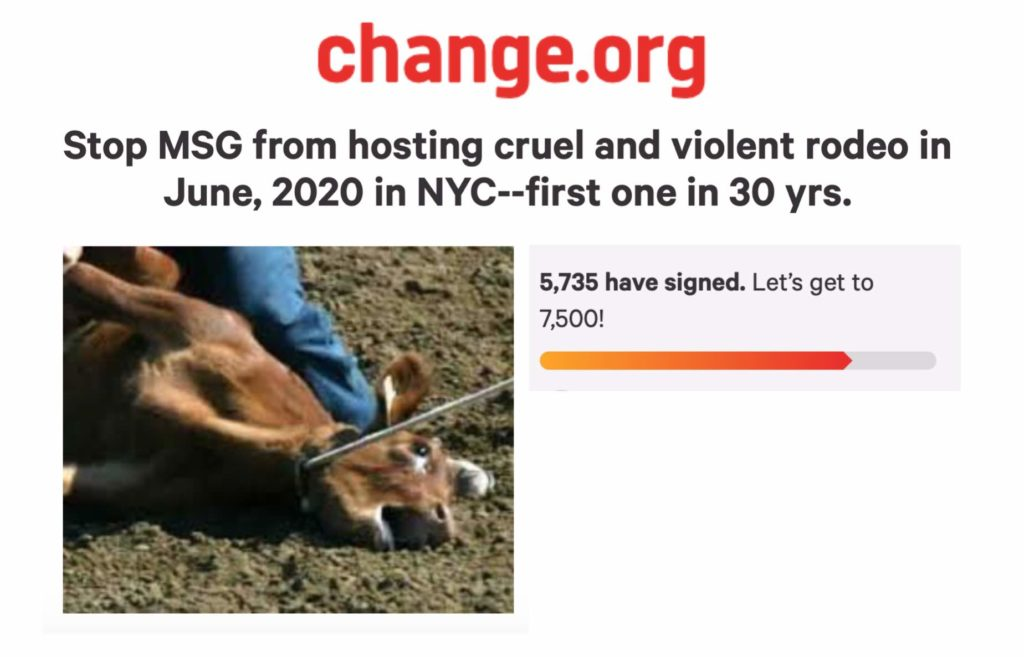 Their Turn - Animal Rights News, Commentary and Calls to Action